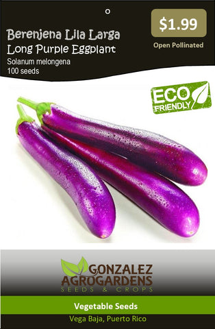 Berenjena Lila Larga Long Purple Eggplant Seeds