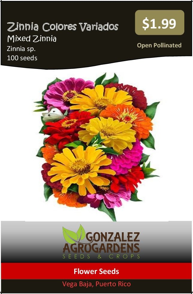 Mixed Zinnia Seeds
