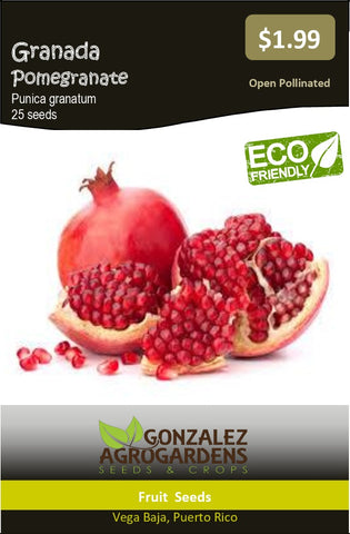 Fruits: Pomegranate Fruit Tree, Punica Granatum, Granada Apple, 50 Seeds