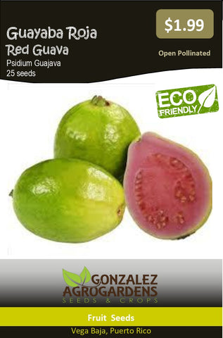 Guayaba Psidium guajava Red Tropical Guava seeds