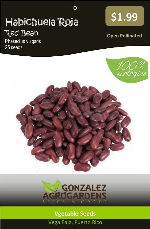 Habichuela Roja Red Bean 'Phaseolus vulgaris' Seeds