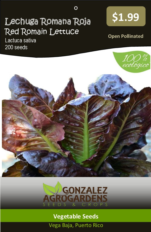 Lechuga Romana Roja Super Red Romaine Lettuce Seeds