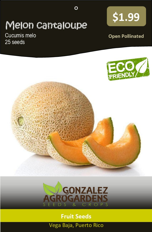 Fruits: Cantaloupe melon seeds packet