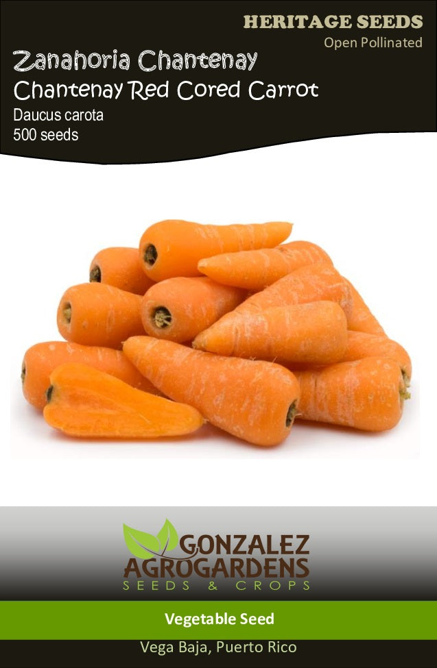 Zanahoria/Chantenay Red Cored Carrot Seeds