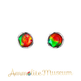 Sterling Silver Round Faceted Ammolite Earring