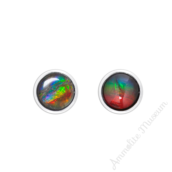 7mm Sterling Silver Ammolite stud Earring