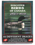 Playing Cards: Discover Birds of Canada