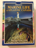 Playing Cards: Marine Life  of Atlantic Canada