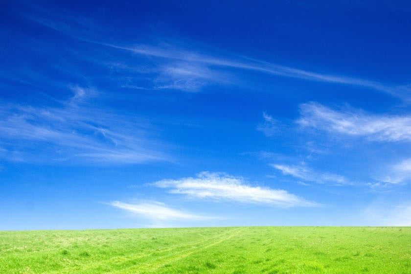 Grassy field with blue sky and clouds