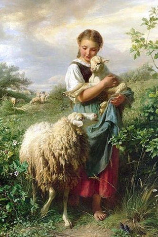 Primal Fiberist: Girl holding sheep in field