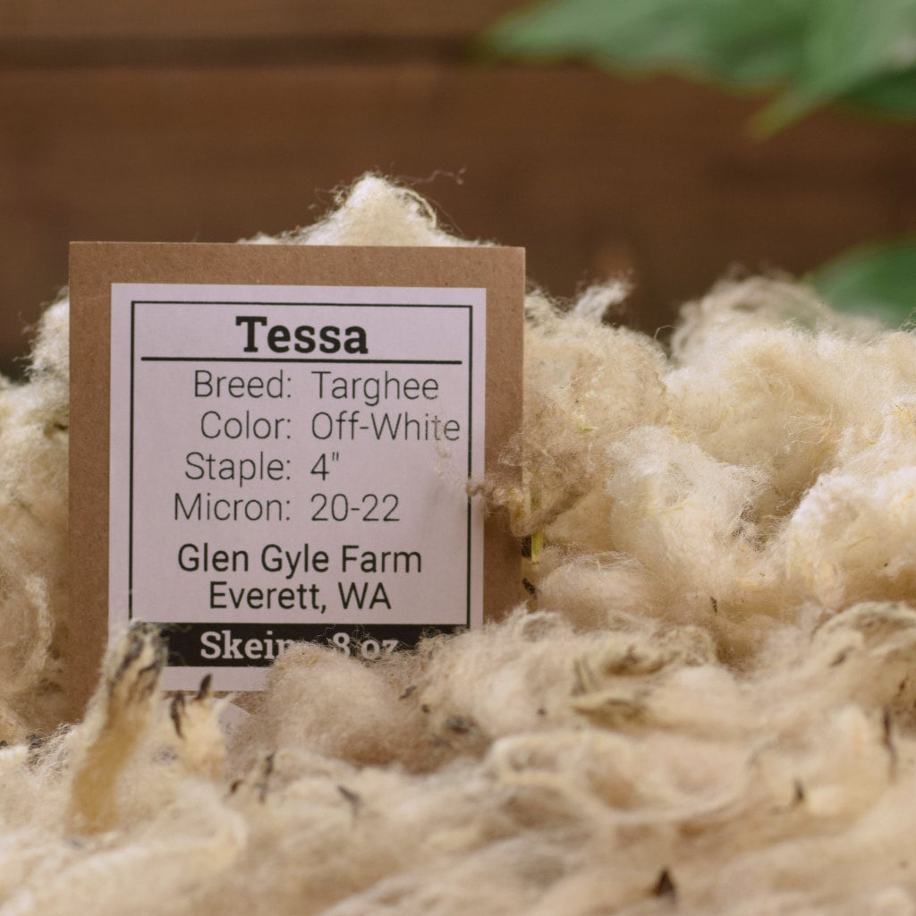 Raw Wool - Targhee