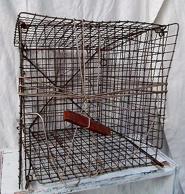 "Vtg Antique 11"" WIRE MESH CRAB TRAP Fishing Nautical Lobster Rustic Decor Art"