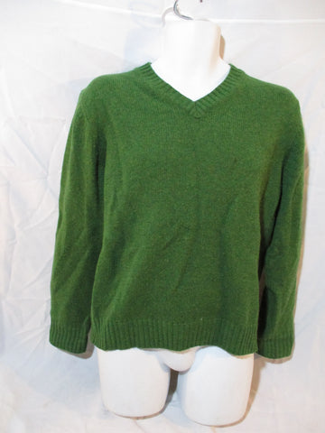 Mens L.L. BEAN Wool Knit Sweater Pullover V-Neck M SAGE GREEN Top
