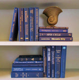 Books By The Foot Box Instant Library Home Interior Design NAVY BLUE Mix Color Therapy