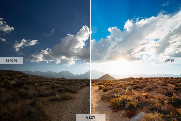 "Ryan Longnecker 'A lot"" Adobe Lightroom Presets"