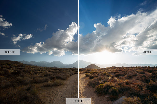 "Ryan Longnecker 'Little"" Adobe Lightroom Presets"