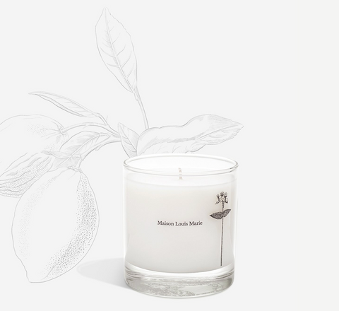 maison louis marie | antidris lime candle