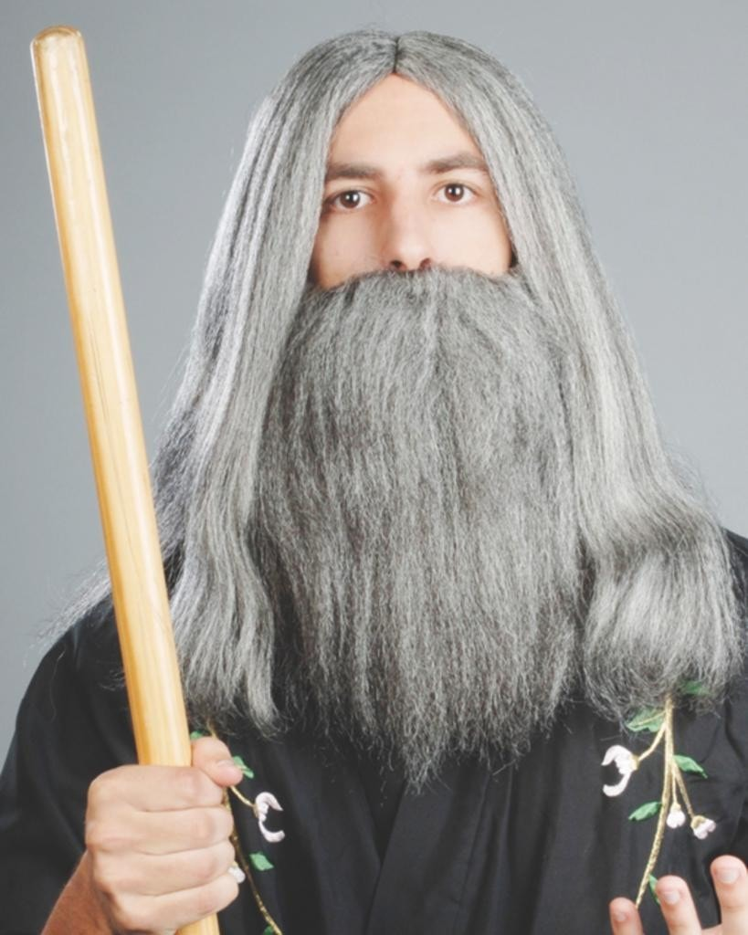 Wizard by Enigma Costume Wigs