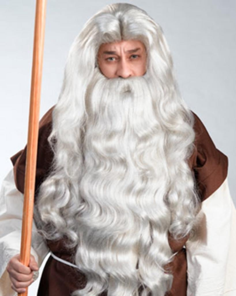 Moses Deluxe by Enigma Costume Wigs