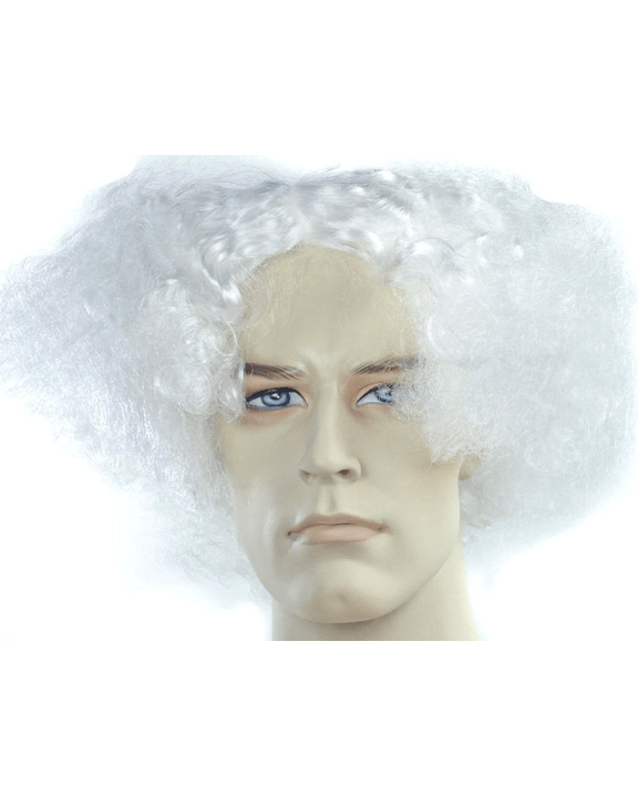 Lacey Costume Bargain Version Mad Scientist Einstein Doc Brown Wig - MaxWigs