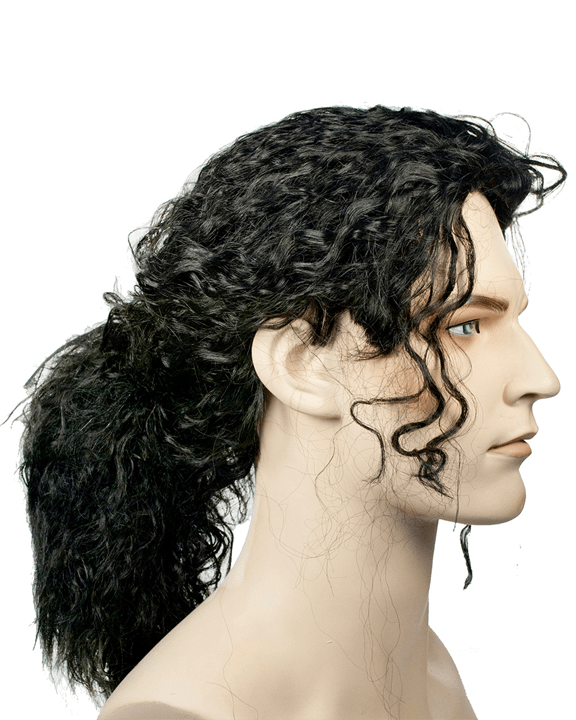 Lacey Costume Michael J Ponytail B1081 - MaxWigs