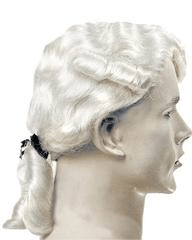 Lacey Costume Aristocratic Colonial Man Widow's Peak - MaxWigs