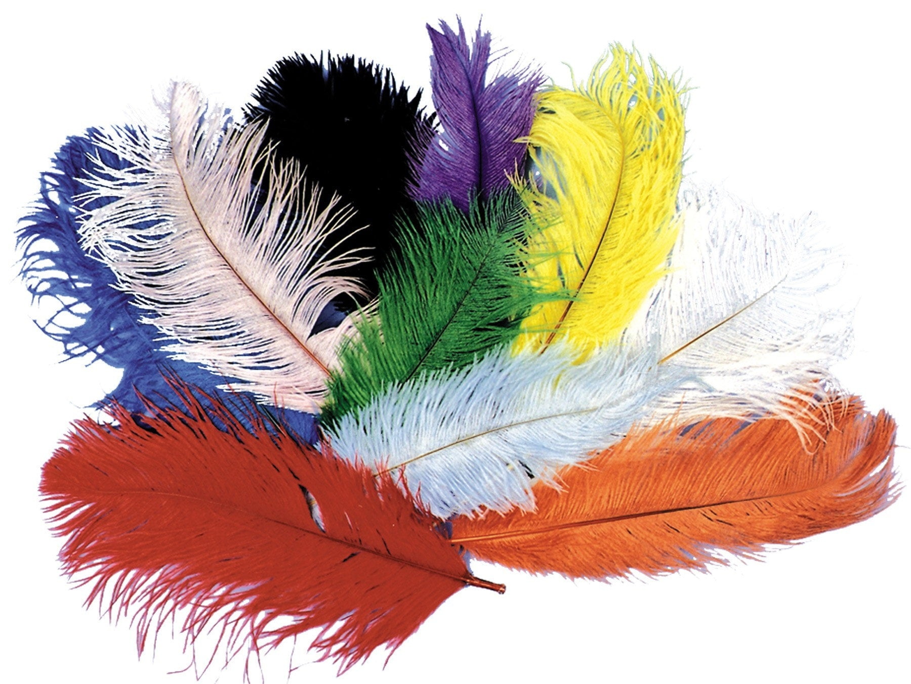 Morris Ostrich Plumes Black - MaxWigs
