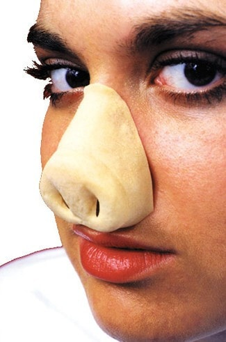 Morris Nose Pig - MaxWigs