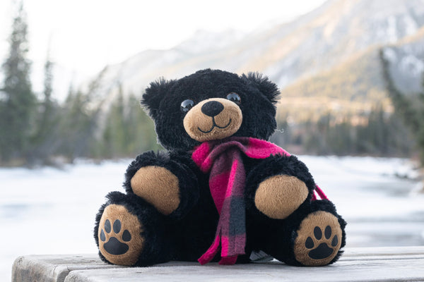Cubby the Baby Bear
