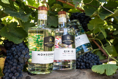 Shop Our Gins