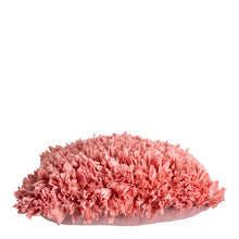 Load image into Gallery viewer, Elodie Cushion 50x50cm Coral