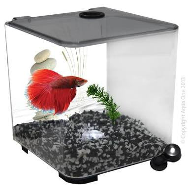 Aqua One betta style acrylic tank 3L 56101
