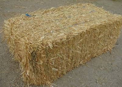 Oaten hay compressed bale