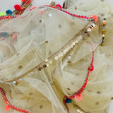 Ivory Net Sequins Colorful Jhilmil Dupatta
