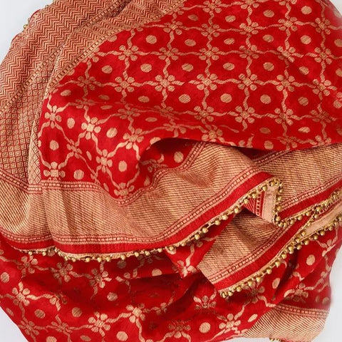 Red Banarsi Embroidered Georgette Stole