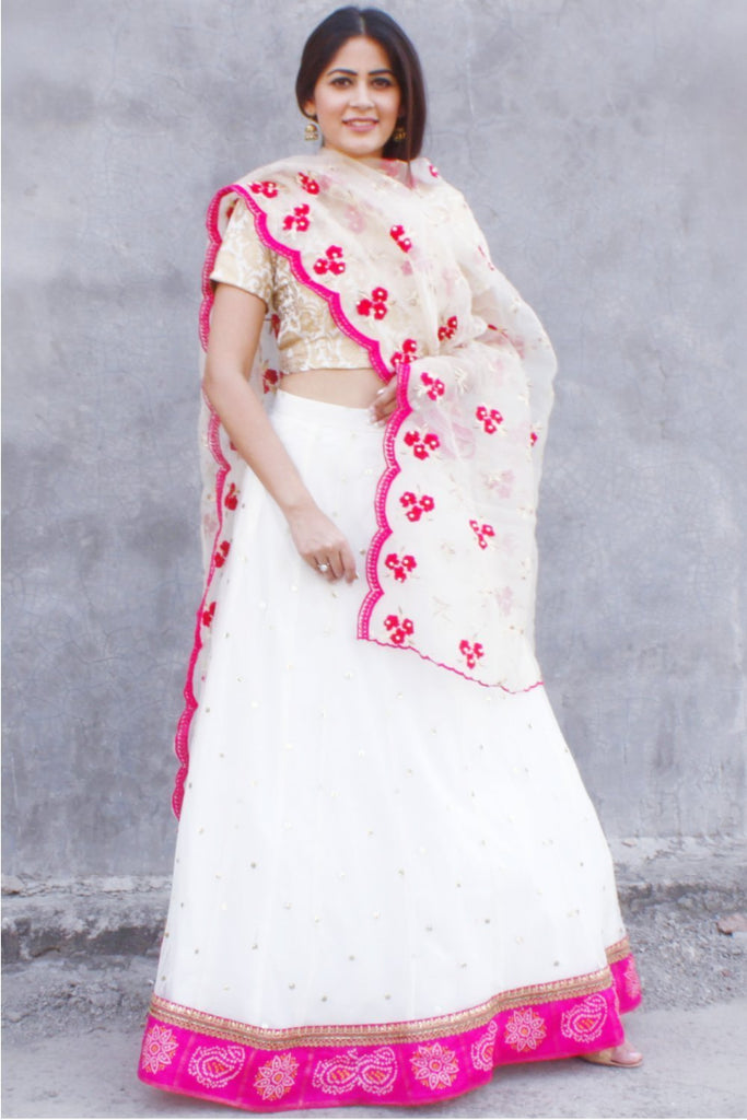 anokherang Lehenga Dreamy Off White Sequenced Lehenga with Brocade Choli and Organza Dupatta