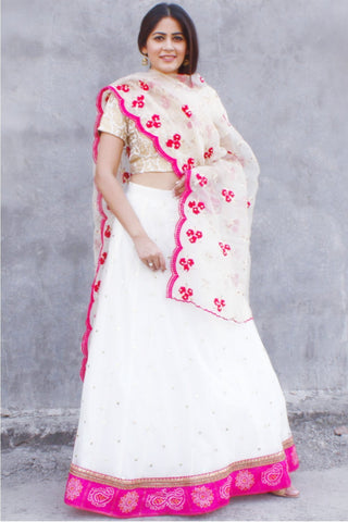 Dreamy Off White Sequenced Lehenga with Brocade Choli and Organza Dupatta