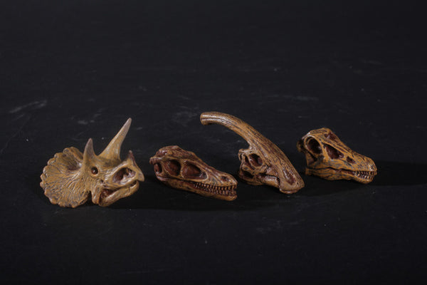 4 Assorted Mini Dinosaur Skulls