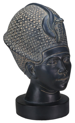 Dark Stone Bust of Tut