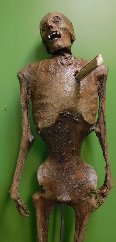 Vampire Nell Mummy With Stake