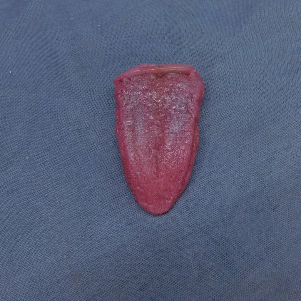 Silicone Tongue