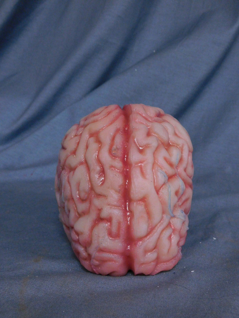 Lifesize Brain, Silicone Rubber - Stock