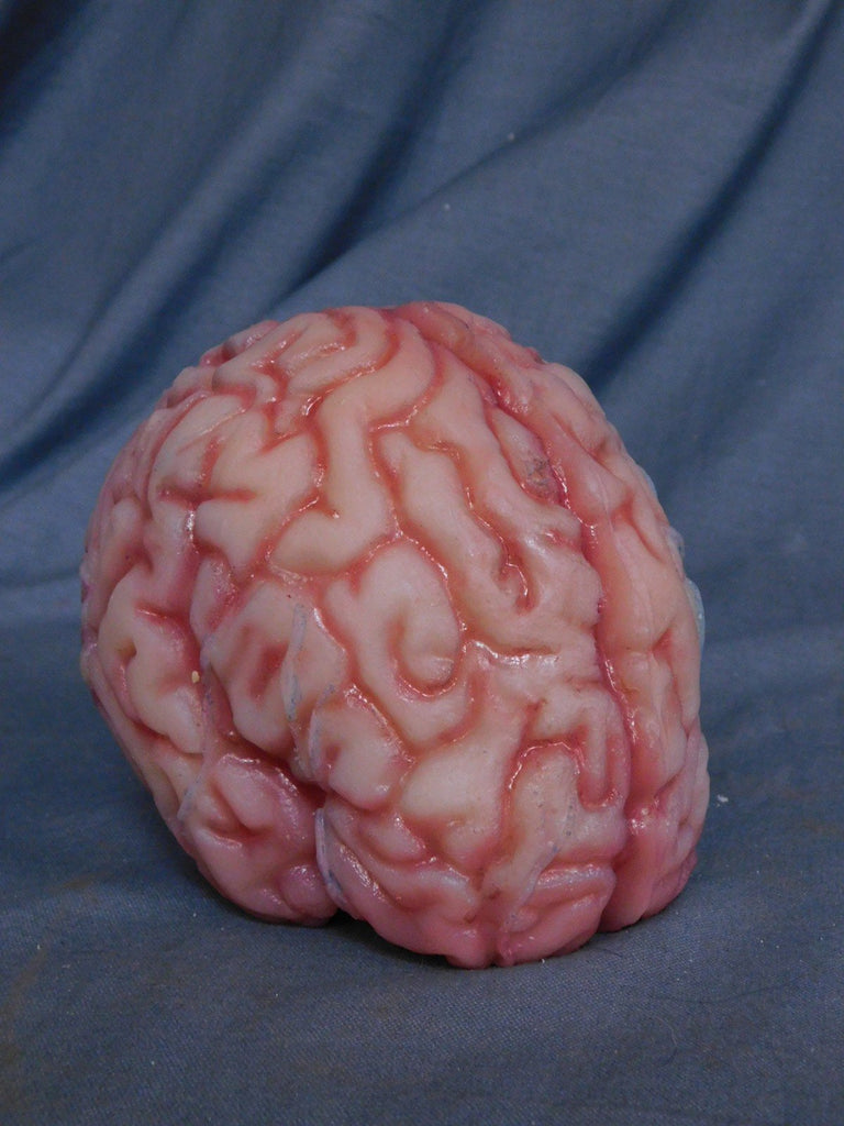 Lifesize Brain, Silicone Rubber