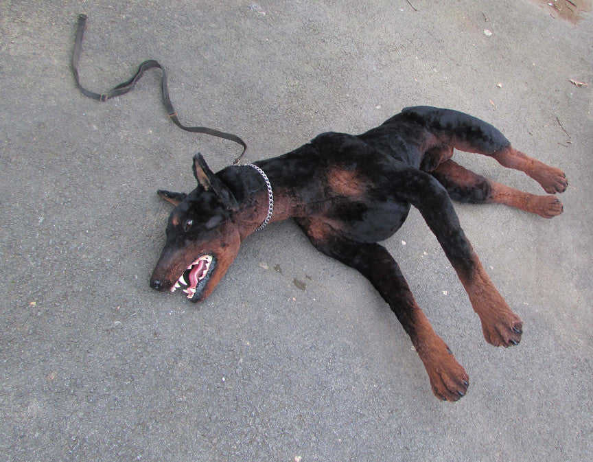 Lifelike Prop Doberman Dog