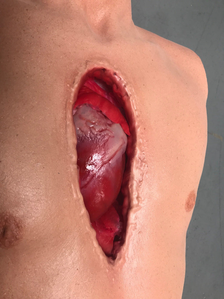 Open Heart Surgery Joe Torso with Removable Silicone Heart