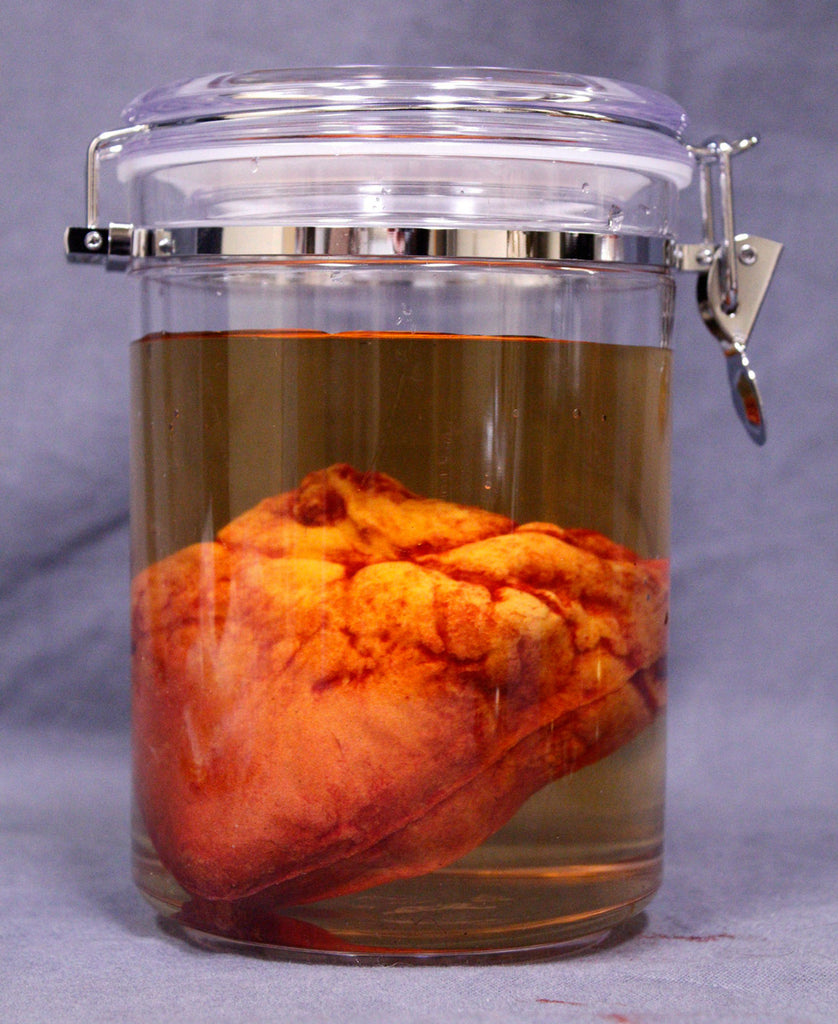Small Lifelike Heart Scientific Specimen Jar