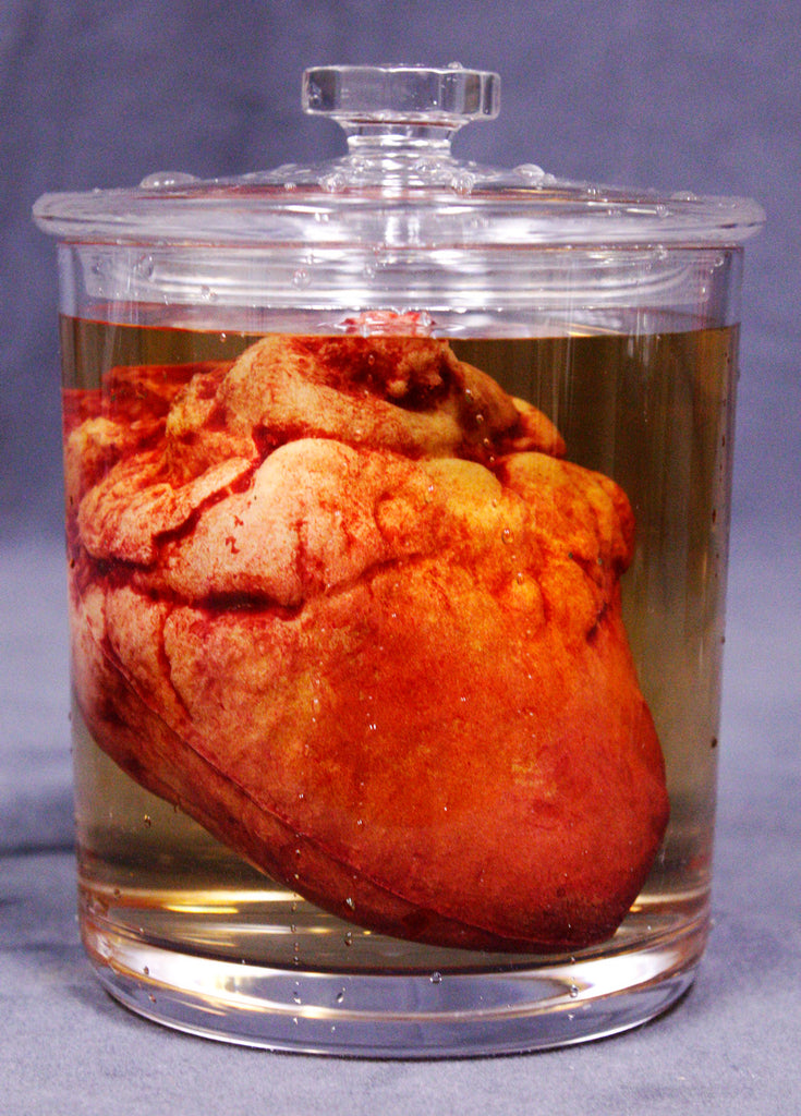 Small Lifelike Heart Apothecary Specimen Jar
