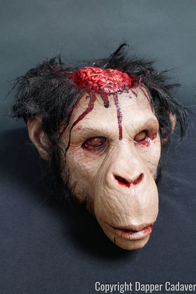 Monkey Brains Head