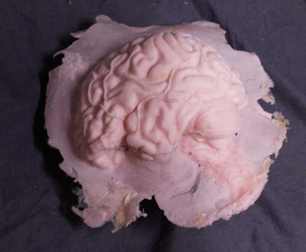Lifesize Brain Form