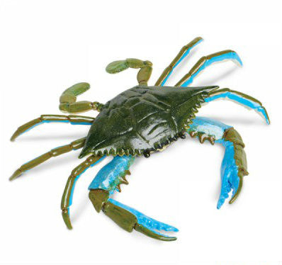 Blue Crab Replica